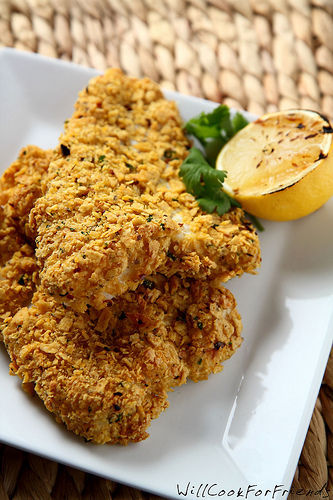 Tortilla Crusted Fish Fillets
