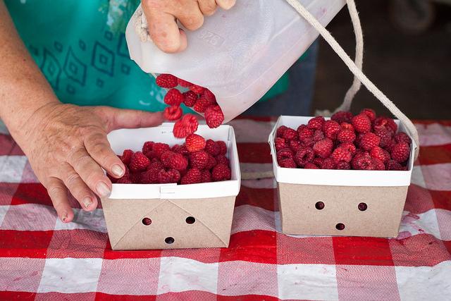 Fresh Picked Raspberries