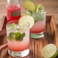 Rhubarb Mojitos with Rhubarb Lime Syrup | Will Cook For Friends
