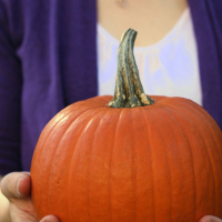 pumpkin puree 1
