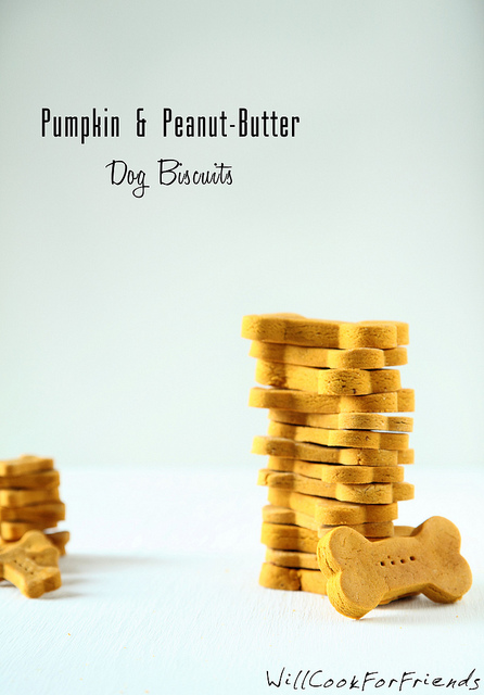 Pumpkin & Peanut Butter Dog Biscuits - tummy friendly treats