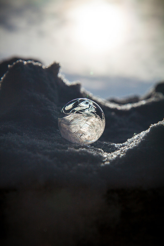 Bubbles in Ice (photo by Willow Arlen)